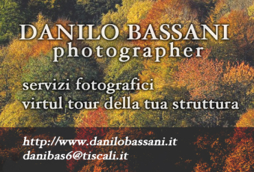 Danilo Bassani copia - Copia
